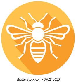 honey bee icon flat icon