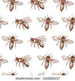 Honey bee seamless pattern. Vintage doodle sketch wrapping vector background. Illustration of bee insect, vintage seamless pattern