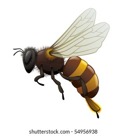"honey bee wasp. ""Full compatible. Created with gradients. Named in layers"""