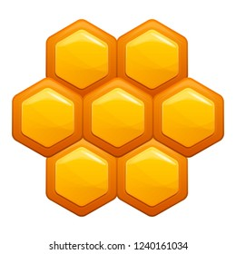 Honey comb icon. Cartoon of honey comb vector icon for web design isolated on white background