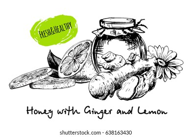 Honey with ginger and lemon in sketch hand drawn style