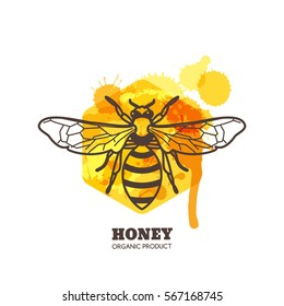 Honey label, emblem, tag design elements. Vector hand drawn outline honeybee on watercolor honeycombs. Bee and liquid honey isolated on white background. Concept for organic farming products package