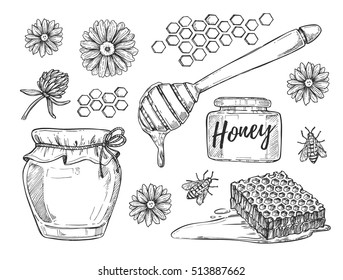 Honey making hand drawn vector illustration set. Honey jar, honey stick, bee, flower and honeycomb sketches isolated on white background.