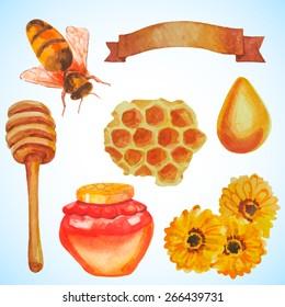 Honey set. Hand drawn watercolor illustrations.