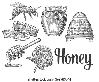 Honey set. Jars, bee, hive, clover, honeycomb. Engraving vintage vector black illustration. Isolated on white background. Hand drawn design element for label and poster