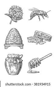 Honey set. Jars, bee, hive, clover, honeycomb. Vector vintage engraving hand drawn illustration on white background