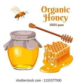 Honey set. Vector illustration in flat style. Bee, honeycomb, wooden honey dipper, glass jar full of honey. Organic and natural product.