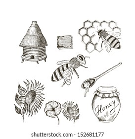 honey. set of vector sketches