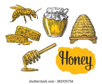 Honey set. Vector vintage engraved illustration