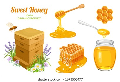 Honey set. Wooden beehive, Honeycombs, bee, honey in glass jar, honey dripping from wooden dipper, honey in metal spoon isolated on white. Vector illustration of natural sweets in cartoon flat style