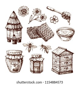 Honey sketch. Bee and honeyed flower, honeycomb and hive. Hand drawn vintage vector isolated set. Honeycomb and honey sketch, bee and flower illustration