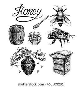 Honey vintage set with bee beehive, glass jar and spoon, barrel, label, lettering, tree branch. Black and white graphic doodle design. Vector illustration.