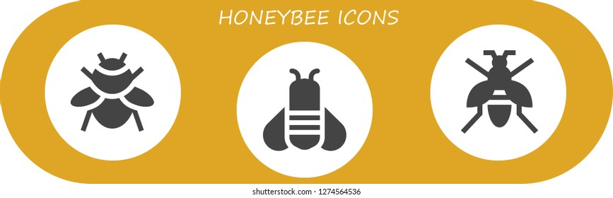 honeybee icon set. 3 filled honeybee icons. Simple modern icons about  - Bumblebee, Bee, Wasp