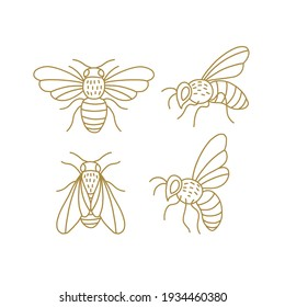 Honeybee line art clipart set. Linear collection of doodle bees. Vector illustration isolated on white background. Simple hand drawn beekeeping design elements.