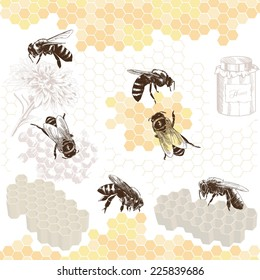 Honeybees on a comb. Hand drawn illustrations