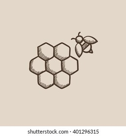 Honeycomb and bee sketch icon.