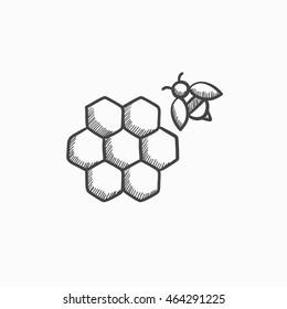 Honeycomb and bee sketch icon for web, mobile and infographics. Hand drawn honeycomb and bee icon. Honeycomb and bee vector icon. Honeycomb and bee icon isolated on white background.