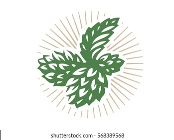 Hop - vector illustration, design on white background.