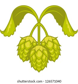 Hops vector visual graphic icon or logo, ideal for beer, stout, ale, lager, bitter labels & packaging  etc.