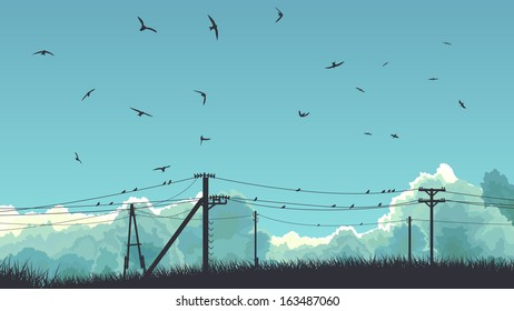 Horizontal abstract illustration of blue sky with clouds and birds on power line.