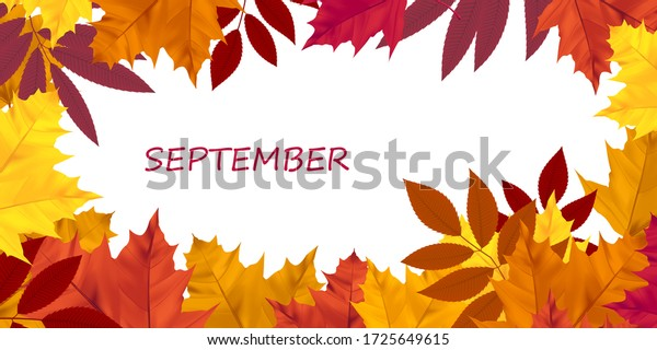 Horizontal banner with bright autumn leaves. Design element for the autumn holidays, events, discounts, and sales.