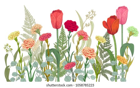 Horizontal border with carnation, tulips, fern, eucalyptus. Red, pink flowers, green leaves on white background. Panoramic view. Hand draw botanical sketch illustration, vintage, vector