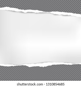Horizontal dark grey torn squared paper strips for text or message are on white background. Vector illustration