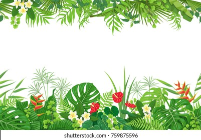 Horizontal floral seamless pattern made with colorful leaves and flowers of tropical plants on wtite background.  Tropic rainforest foliage border. Vector flat illustration.