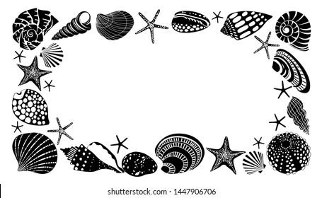 Horizontal frame of different black sea shells and starfish.