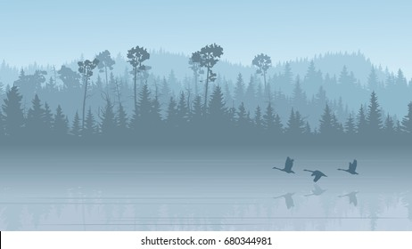 Horizontal illustration morning misty coniferous forest hills with its reflection in lake with swans ( in blue tone).