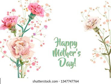 Horizontal Mother's Day, Victory Day card with carnation: red, pink, flowers, twigs gypsophile, white background. Templates for design, vintage botanical illustration in watercolor style, vector