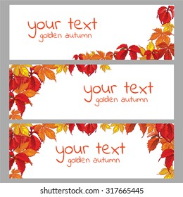 Horizontal postcard on the theme of autumn. The leaves of parthenocissus. Your text. Vector.