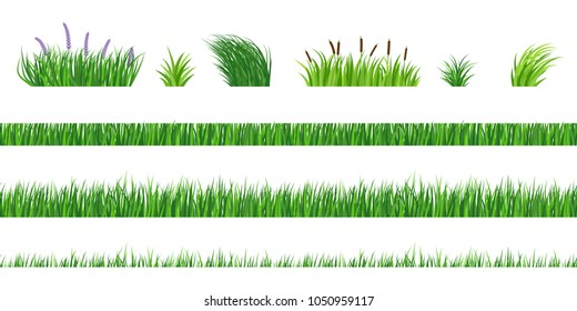 Horizontal seamless elements of green grass of different degree of germination. Cut and fresh vegetation. Bushes with flowers and reeds.