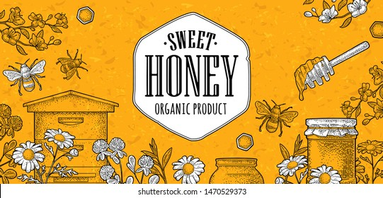 Horizontal and square posters honey on craft texture paper. Jars, bee, hive, spoon, honeycomb, clover, camomile, cherry branch and honeycomb. Vector vintage color engraving illustration