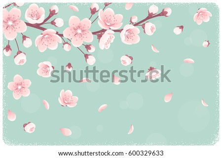 horizontal template cherry blossom spring flowers のベクター画像
