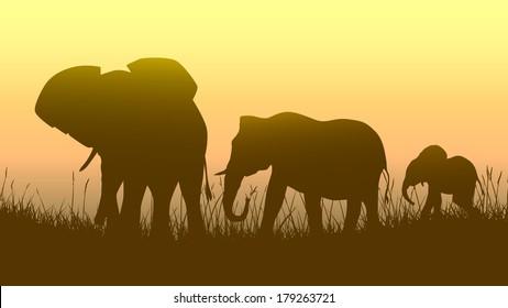 Horizontal vector illustration family of elephants in African sunset savanna.