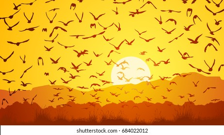 Horizontal vector illustration flock of birds at sunset over meadow.
