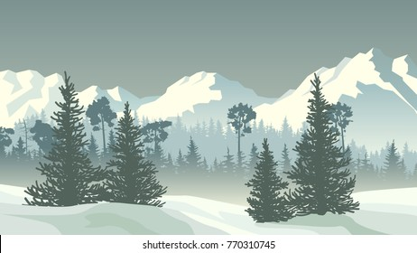 Horizontal vector illustration of snowy coniferous forest and spruce trees valley with mountains.
