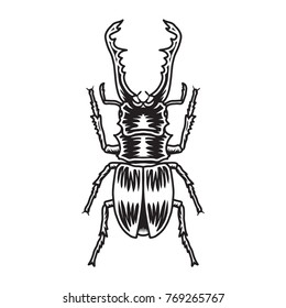 Horn Beetle Vector
