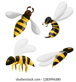 Hornet or wasp icons set. Cartoon set of hornet or wasp vector icons for web design