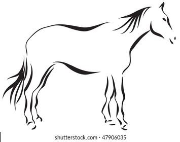 Horse 11