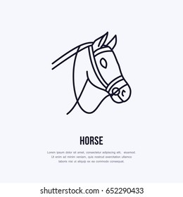 Horse, cute pony flat line icon. Logo for equestrian club, horserace equipment store.