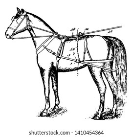 Horse Detaching Harness type of horse tack that allows a horse or other equine to pull various horse drawn vehicles such as a carriage, vintage line drawing or engraving illustration.