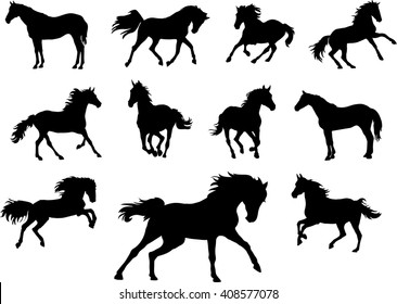 Horse, drawing, black, silhouette, symbol