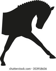 Horse dressage head