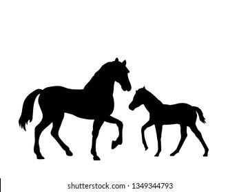 Horse and foal farm mammal black silhouette animal