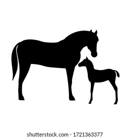 Horse with foal silhouette isolated on white background. Farm animal.