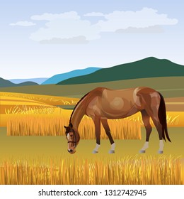 The horse is grazed on a meadow against a background of a mountain landscape. Vector illustration