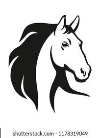 Horse head illustration