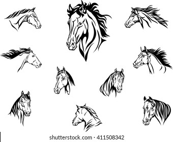 Horse head illustrations set.